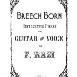breech cover